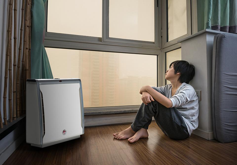 l sungen gegen luftverschmutzung lux international. Black Bedroom Furniture Sets. Home Design Ideas