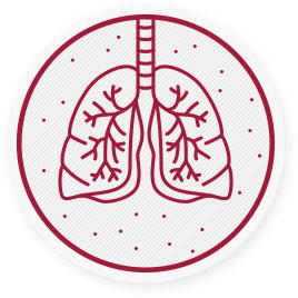 Fine dust reduces life expectancy and is responsible for many  diseases, mainly of the respiratory system → respirable particles reach our bronchie and end up in our bloodstream.