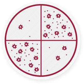 A háziporban a poratkák ürülékének koncentrációja október és november, valamint március és április hónapokban a legmagasabb.