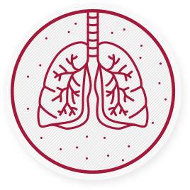 A finom por számos egészségügyi, főként légzőszervi problémát okozhat azáltal, hogy a belélegzett részecskék elérik a hörgőket és így a véráramba kerülnek.